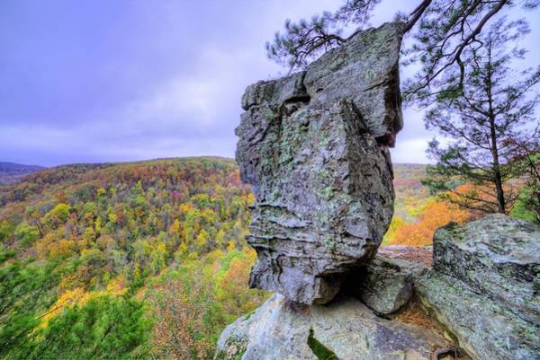 Wall Art - Photograph - Balancing Act In The Ozarks by JC Findley