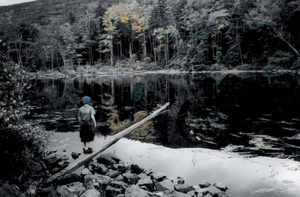 Photograph - Balancing On A Log by Wayne King