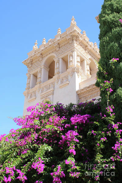 Prado Photograph - Balboa Park Hospitality House With Bougainvillea by Carol Groenen