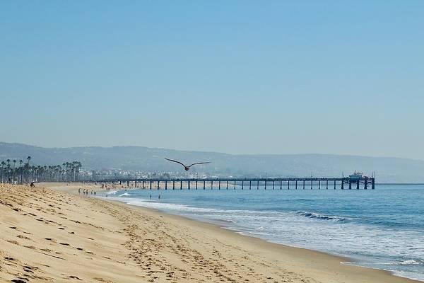 Photograph - Balboa Pier by Brian Eberly