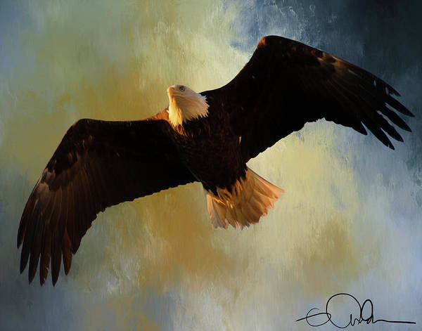 Digital Art - Bald Eagle Art by Gloria Anderson