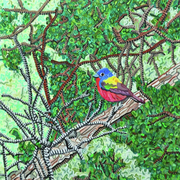 Bunting Painting - Bald Head Island, Painted Bunting At Defying Gravity by Micah Mullen