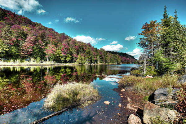 Photograph - Bald Mountain Pond Reflections by David Patterson