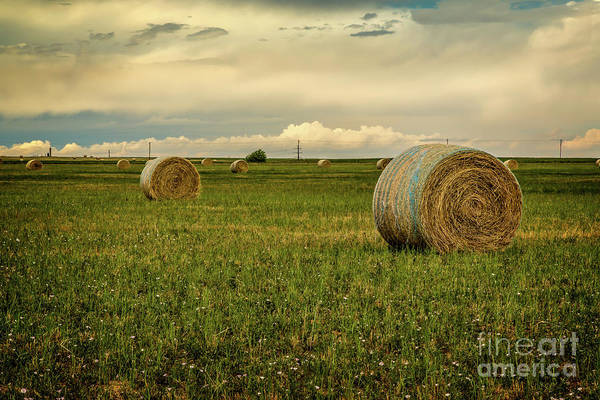 Photograph - Bale And Hay by Jon Burch Photography