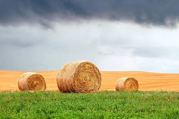 Photograph - Bales And Layers by Todd Klassy