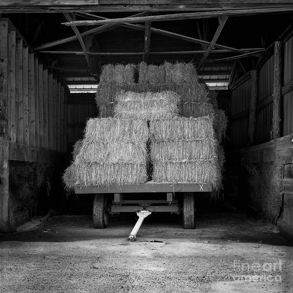 Photograph - Bales For Sale by Patrick M Lynch