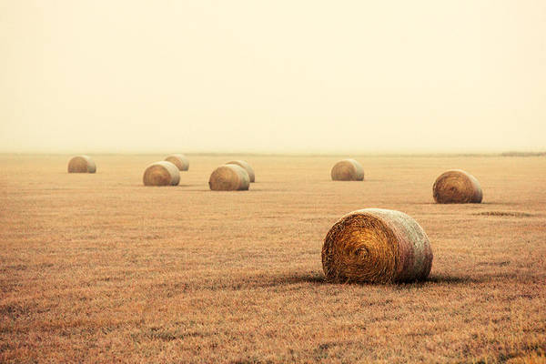 Photograph - Bales In The Fog by Todd Klassy