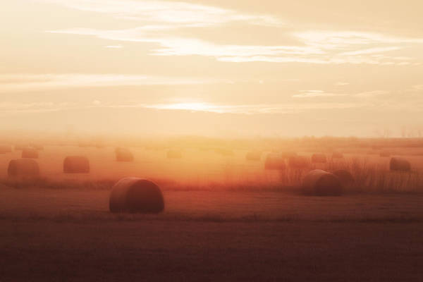 Photograph - Bales In The Mist by Todd Klassy