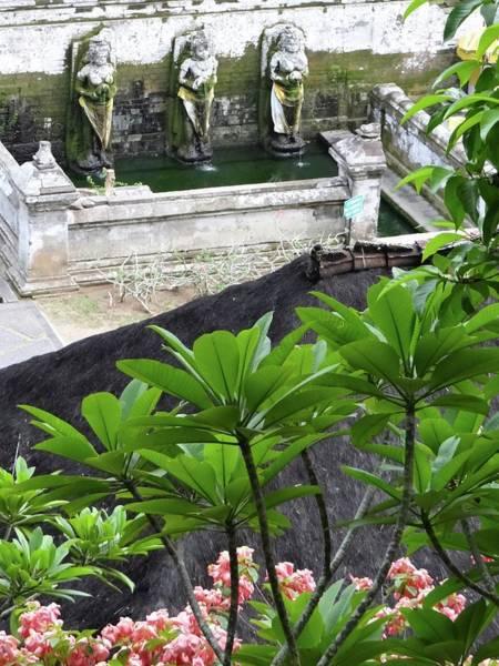 Photograph - Bali Lady Fountain by Exploramum Exploramum