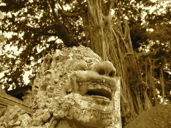 Photograph - Bali Statue In Orange - Front Profile by Exploramum Exploramum