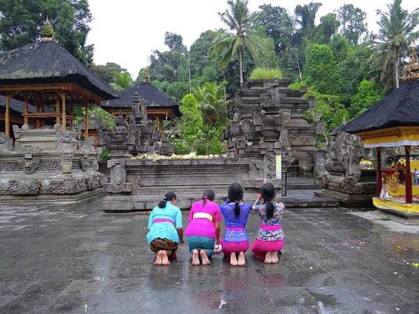 Photograph - Bali Temple Women Bowing by Exploramum Exploramum
