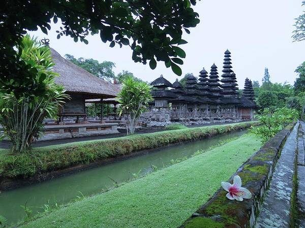 Photograph - Balinese Temple With Flower by Exploramum Exploramum