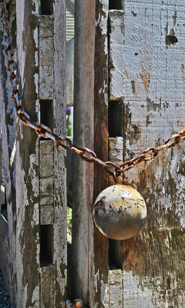 Photograph - Ball And Chain by George D Gordon III