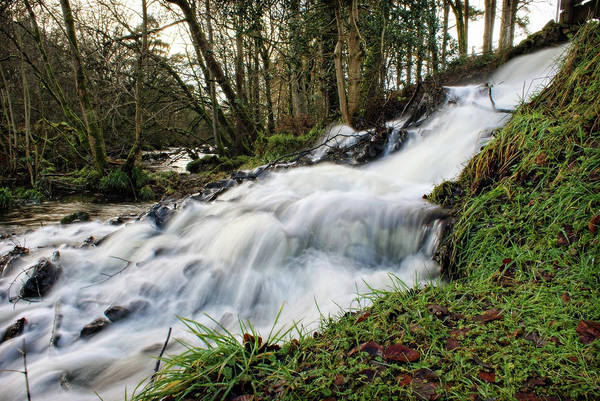 Photograph - Ballinderry River At Wellbrook by Colin Clarke