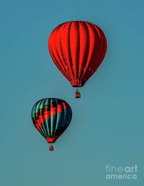 Photograph - Balloon 10 by Nick Zelinsky