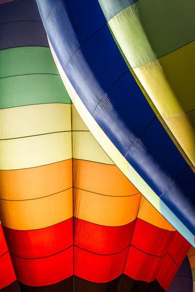 Photograph - Balloon Colors - Vertical by Ron Pate