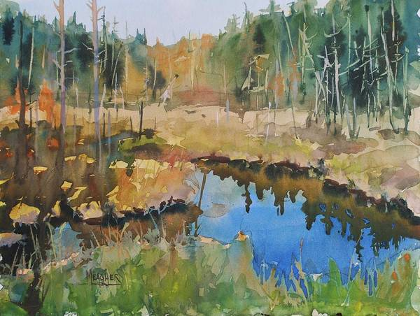 Lake Superior Painting - Bally Road Bog by Spencer Meagher