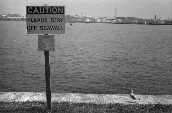 Photograph - Baltimore - Chesapeake Bay 2003 Bw by Frank Romeo