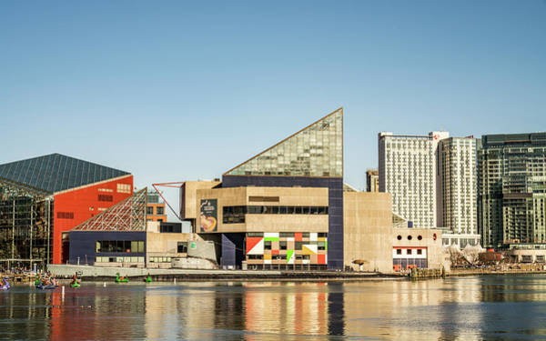Photograph - Baltimore Harbor Buildings by Framing Places