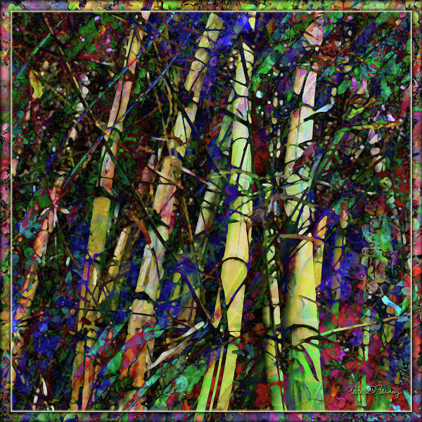 Digital Art - Bamboo by Barbara Berney