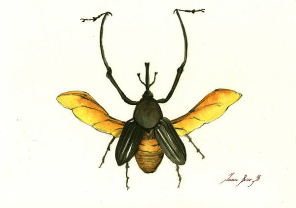 Insect Painting - Bamboo Beetle by Juan Bosco
