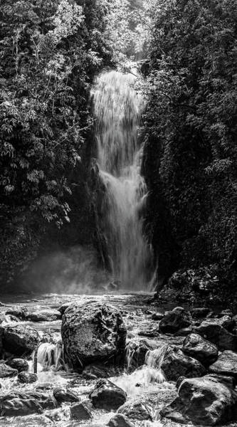 Wall Art - Photograph - Bamboo Forest Waterfall by Kelley King