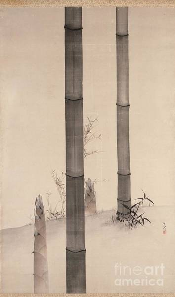 Painting - Bamboo by Celestial Images