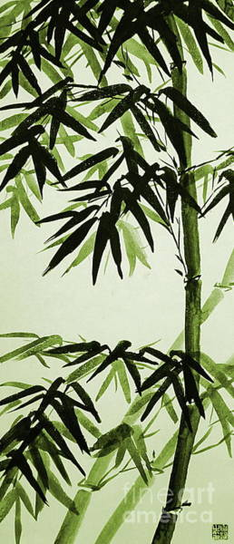 Wall Art - Painting - Bamboo - Olive Green by Birgit Moldenhauer