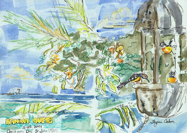 Us Virgin Islands Painting - Bananaquits by Thyrsie Cahoon