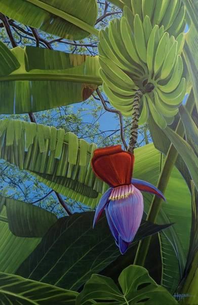 Wall Art - Painting - Bananeira by Hunter Jay