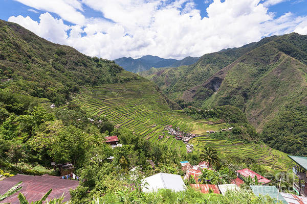 Photograph - Banaue Rice Terraces In The Philippines. by Didier Marti