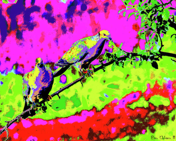 Photograph - Band-tailed Pigeons Art #2 by Ben Upham III