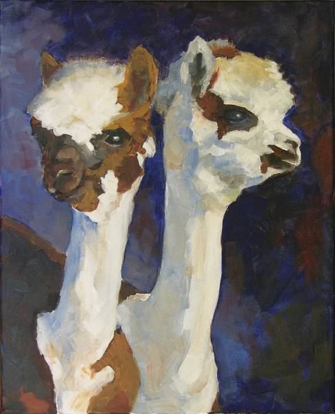 Alpaca Painting - Bandolero And Carlos by Mary McInnis