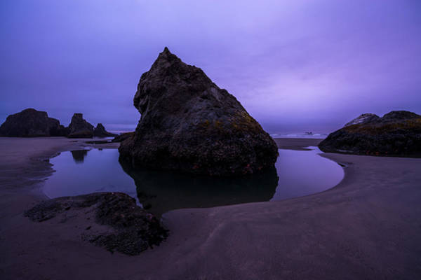 Photograph - Bandon Beach by Dustin  LeFevre