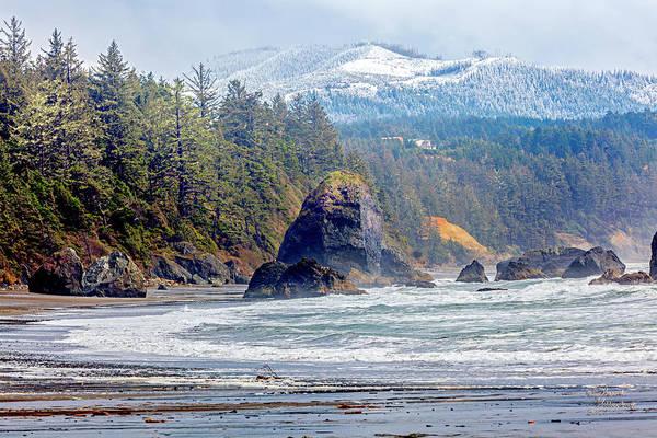 Photograph - Coastal Bandon Oregon Art by David Millenheft