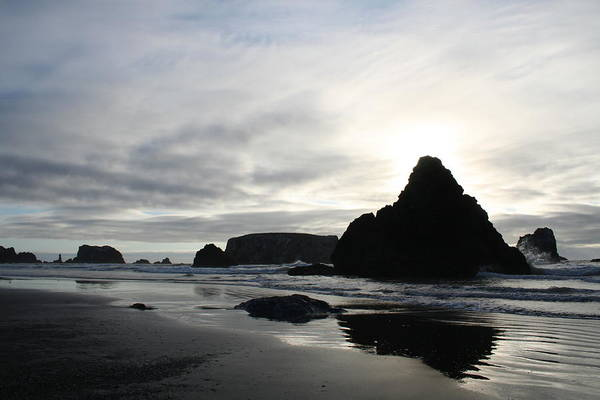 Photograph - Bandon Silhouette by Dylan Punke