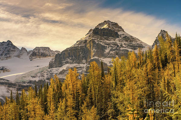 Wall Art - Photograph - Banff Larch Valley Autumns Serenity by Mike Reid