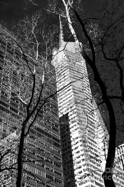 Photograph - Bank Of America Tower Dimensions by John Rizzuto