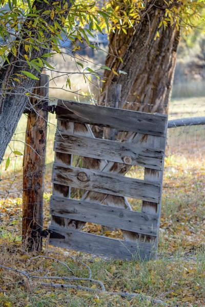 Photograph - Bannack Gate At Sunrise by Teresa Wilson