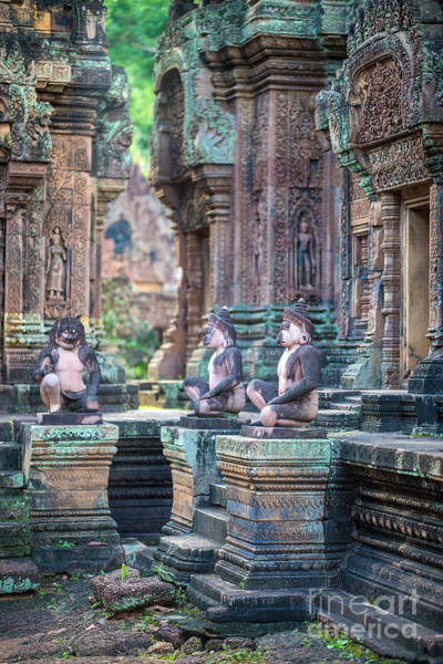 Angkor Wall Art - Photograph - Banteay Srey Temple Pink Monkeys by Mike Reid