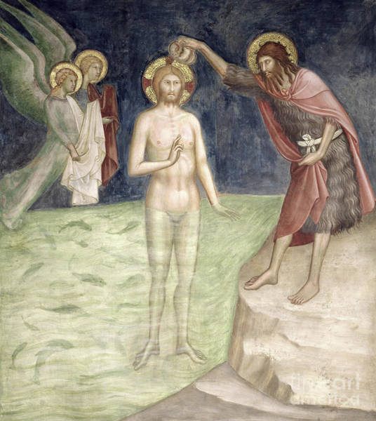 Wall Art - Painting - Baptism Of Christ, From A Series Of Scenes Of The New Testament by Barna da Siena