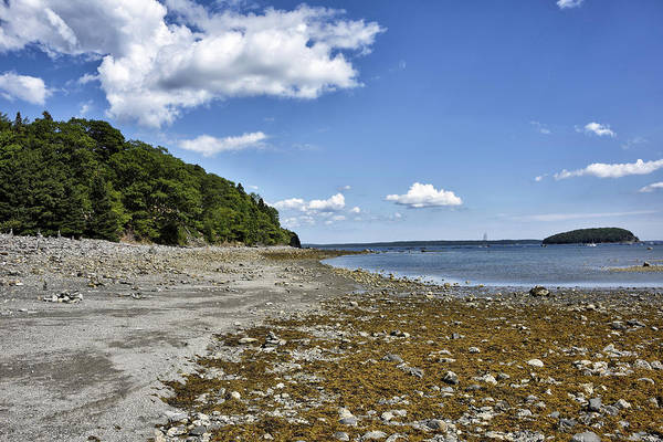 Wall Art - Photograph - Bar Island And Harbor - Maine by Brendan Reals