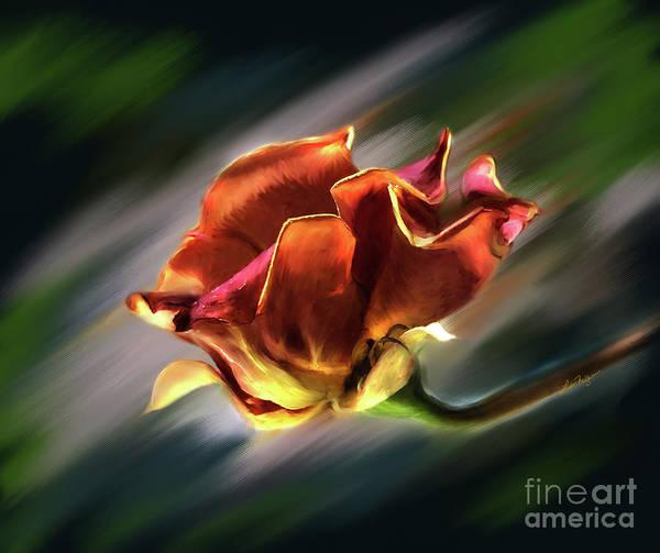 Digital Art - Barbara's Beautiful Rose by Lisa Redfern
