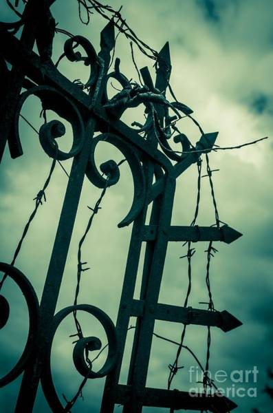 Lock Gates Photograph - Barbed Wire Gate by Carlos Caetano