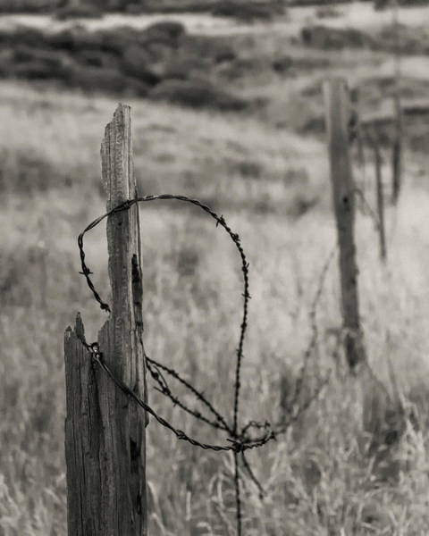 Fence Post Photograph - Barbed Wire by Joseph Smith