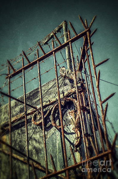 Iron Fence Wall Art - Photograph - Barbed Wire On Wall by Carlos Caetano