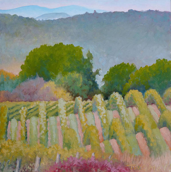 Impressionistic Vineyard Wall Art - Painting - Barboursville Vineyards 1 by Catherine Twomey