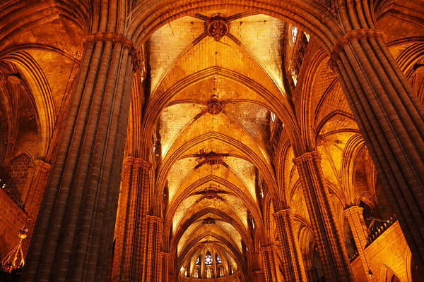 Photograph - Barcleona Cathedral Ceiling by Toby McGuire
