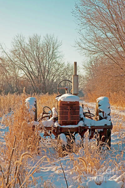 Photograph -    Bard Road Farm Il Tractor Frosted Field Winter  by Tom Jelen