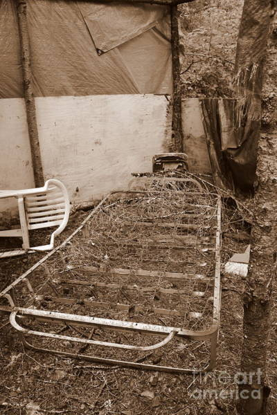 Photograph - Bare Bones Miners Camp by Marie Neder